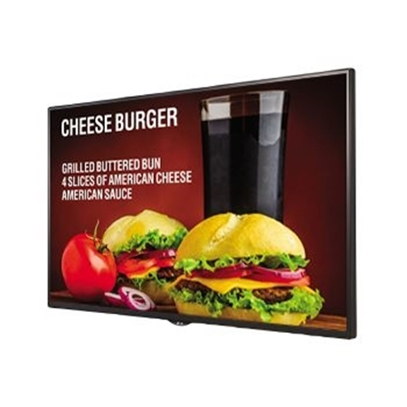Picture for category Large Format Displays